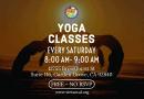 Lớp Học Yoga Miễn Phí – FREE Yoga Classes